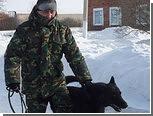 Служебный пес помог раскрыть кражу кур-гриль