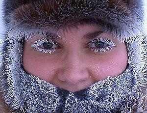"""Блогеров охватил """"массовый психоз"""" - как бы не замерзнуть на митинге  / """"Это ужасно! В России - зима!!!"""" - шутят в """"Другой России"""""""