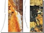 Палеонтологи восстановили пение древних кузнечиков