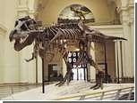 Палеонтологи подтвердили хищный статус тираннозавра