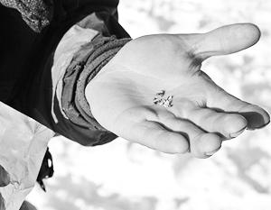 Челябинскому метеориту дали название