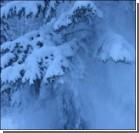 США накрыла снежная буря, введен режим ЧС