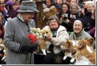 Елизавета II откажется от разведения собак
