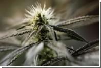 Польского священника задержали за курение марихуаны в компании подростков