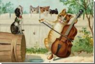 На основе мяуканья ученые создали специальную музыку для кошек