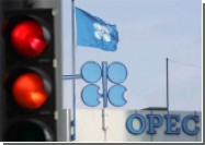 ОPEC не стала менять квоты на добычу нефти