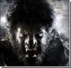 Опубликованы первые фото Бенисио дель Торо в образе Человека-волка!