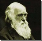 """Дарвин """"прогадал"""" насчет куриц"""
