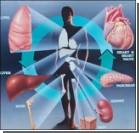 Отныне можно совершить путешествие по человеческим органам!