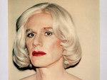 Венская галерея спасла фотоколлекцию Polaroid