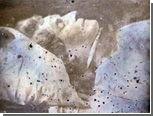 В Польше нашли посмертную фотографию Шопена