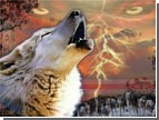 Поздравляем. Победителем фестиваля «Литература и кино» стали белорусские «Волки»