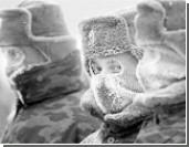 Россия создает спецбригаду для действий в Арктике
