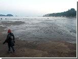 Цунами у побережья Японии оказалось десятисантиметровой волной