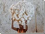 Запрет на экспорт хлопка в Индии продлился меньше недели