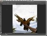 Вышла бета-версия Photoshop CS6