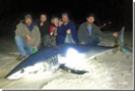 Американский рыбак поймал 270-килограммовую акулу