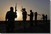 Правозащитники рассказали о 400 завербованных ИГ «детенышах халифата»