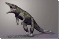 В США открыли гигантского двуногого крокодила триаса