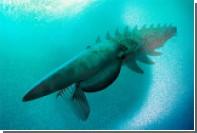 Креветка палеозоя оказалась размером с человека