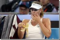 Шарапова второй раз подряд возглавила медиарейтинг российских спортсменок