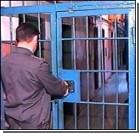 """""""Друзья"""" убитого получили 15 лет тюрьмы"""