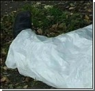 8-летнюю девочку убили из ревности