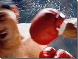 Российских боксеров поколотили ирландские любители