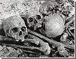 В Запорожской области нашли неизвестную братскую могилу около 1000 советских воинов