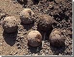 В Приднестровье сельский житель обнаружил на своем участке загадочные шары