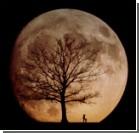 Луна превратится в... кладбище!?