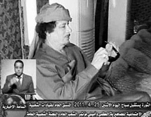 Каддафи обратился к НАТО с предложением договориться о нефти