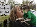 Жительницу Оклахомы решили лишить парализованного кенгуру