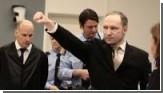 Брейвик признался, что «стратегию убийства» почерпнул из интернета