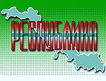 """Приднестровская организация """"Республика"""" займется внешней политикой"""