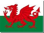 На выборах в парламент Уэльса победила Лейбористская партия