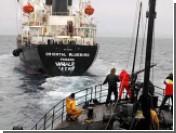 Защитники китов отправились на охоту за исландскими китобоями