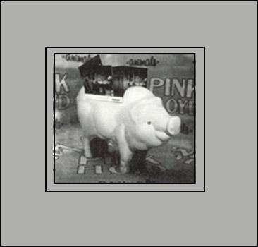 От экс-гитариста Pink Floyd улетела… свинья! Фото