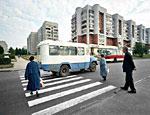 В Петербурге будут лишать прав водителей, не уступающих дорогу пешеходам