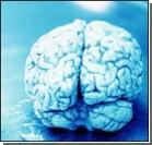 Полову энергии мозг расходуется вхолостую