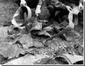 Абхазия сбила еще два беспилотника