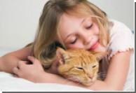 Ранний контакт детей с котами снижает риск развития аллергии