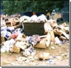 Британцы выбрасывают в мусор тонны продуктов!