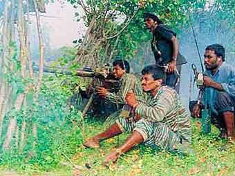 """Ланкийцы вышли на улицы праздновать победу над """"Тамильскими тиграми"""""""