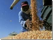 Египет снял арест с партии российской пшеницы