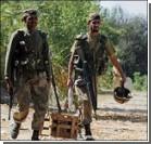 Армия очистила страну от тигров