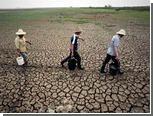 Засуха в Китае признана сильнейшей за полвека