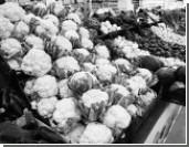 Лидия Кафтырева: Неизвестно, как в Европе мыли огурцы