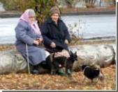 «Покращення» идет полным ходом. У украинцев все чаще отбирают квартиры за долги по коммуналке