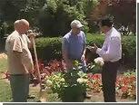 Украденные 54 года назад цветы вернулись в родной парк